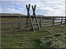 HU3909 : Ladder Stile on Path to Sumburgh Head by David Dixon