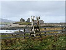 HU3909 : Ladder Stile on Coastal Path near Jarlshof by David Dixon