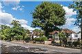 TQ1959 : Epsom Road by Ian Capper
