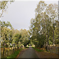 NH5756 : Minor road, by Ferintosh by Craig Wallace