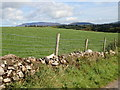 H9412 : Grazing land on the east side of Coolderry Road by Eric Jones