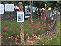 SS4688 : Ribbon of Poppies by Alan Hughes