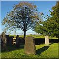 SD5769 : Graveyard, Gressingham : Week 39