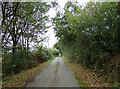 TL8328 : Nightingale Hall Road, Greenstead Green by Adrian Cable