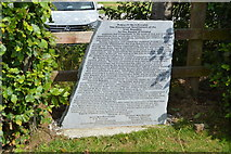 N9259 : The Irish proclaimation by N Chadwick