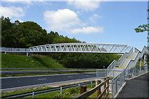 TQ6141 : New footbridge over A21 by N Chadwick