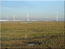 TQ8972 : Tailness Marshes, Shepherds Creek, Deadmans Island and West Swale by Mike Quinn