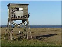 TM0308 : Ruined tower on the Essex coast at Bradwell-on-Sea by Marathon