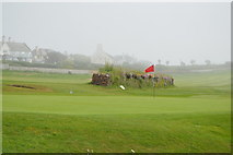 SX6642 : Green, Thurlestone Golf Course by N Chadwick