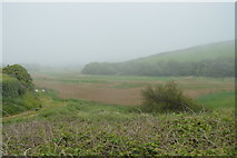 SX6741 : South Milton Ley Nature Reserve by N Chadwick