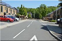 TQ6041 : Bluebell Walk by N Chadwick