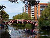 SK5803 : Rowers next to the Mill Lane Bridge in Leicester by Mat Fascione