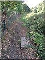 SX7799 : Footpath along railway by Hugh Craddock
