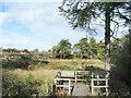 NZ3132 : Viewing platform at Thrislington National Nature Reserve by Trevor Littlewood
