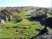 SX6781 : Bridleway leaves the road by Michael Dibb