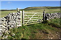 SD7173 : Field gate on north side of Fell Lane by Roger Templeman