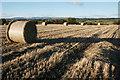 NN8808 : Stubble field and bales : Week 41