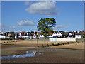 TQ8585 : Chalkwell Esplanade : Week 40