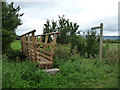 NY7412 : Signpost and footbridge for the public footpath to Ploughlands by Christine Johnstone