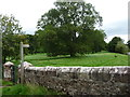 NY7613 : Public footpath across Musgrave Church Field by Christine Johnstone