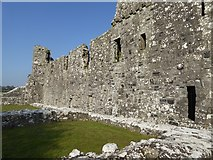 N5170 : East wall of Fore Abbey by Oliver Dixon