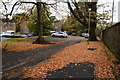 H4772 : Fallen leaves, T & F grounds, Omagh by Kenneth  Allen