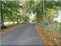 J2533 : Cabra Road running past the Cabra House demesne by Eric Jones