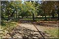 TQ2668 : Morden Hall Park by Stephen McKay