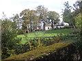 J2232 : A disused homestead on the Cavan Road by Eric Jones