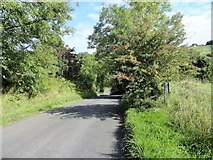 NZ1350 : Road down to Stockerley Burn by Robert Graham