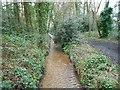 SU8154 : Fleet: Brookly Stream in Oakley Park by Nigel Cox