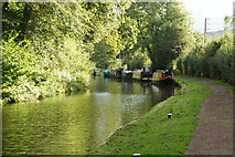 SO8484 : Small bend on the Staffordshire & Worcestershire Canal by Bill Boaden