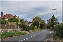 TQ3355 : Stanstead Road by Ian Capper