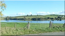 J3655 : Dairy Lake viewed from the A24 north of Ballynahinch by Eric Jones