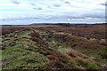 NZ9002 : Prehistoric cross dyke, Fylingdales Moor by Mick Garratt