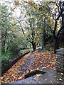 SD7441 : Clitheroe Castle park: autumn paths by Stephen Craven