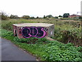 TM0124 : WWII Pillbox, Colchester by PAUL FARMER