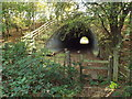 TQ5351 : Stile and tunnel near Sevenoaks by Malc McDonald
