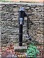 SP4414 : Water pump in Lamb Lane by Steve Daniels