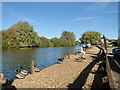 TG3416 : River Bure near the Ferry Inn, Horning by Adrian S Pye