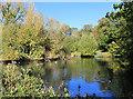 TQ3392 : Lake in Pymmes Park by Des Blenkinsopp