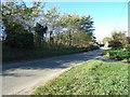 TM4198 : Church Road, Thurlton by Adrian Cable