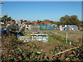 TM4198 : Allotments off Church Road by Adrian Cable