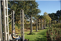 TQ2882 : View of climbing frames in the Inner Circle in Regent's Park by Robert Lamb