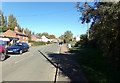 TM4198 : Beccles Road, Thurlton by Adrian Cable