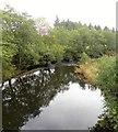 NU1515 : The River Aln by Gordon Hatton