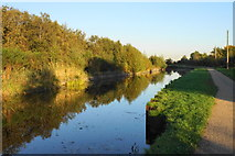 SJ6999 : The Bridgewater Canal by Bill Boaden