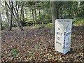 TG1622 : Milestone at Haveringland by Adrian S Pye