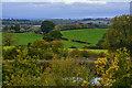 SK4662 : Ashfield : Countryside Scenery by Lewis Clarke