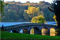 ST7733 : Wiltshire : Stourhead - Palladian Bridge by Lewis Clarke
